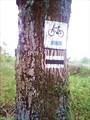 Разрешено движение велосипеда.