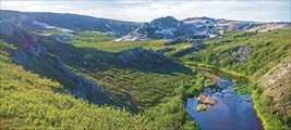 Долина Каменной Виски