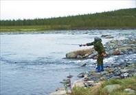 Пятиречье. Устье реки Левая Пайера