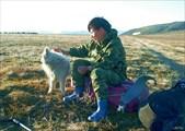 Встреча с оленеводами. Вдали стадо оленей