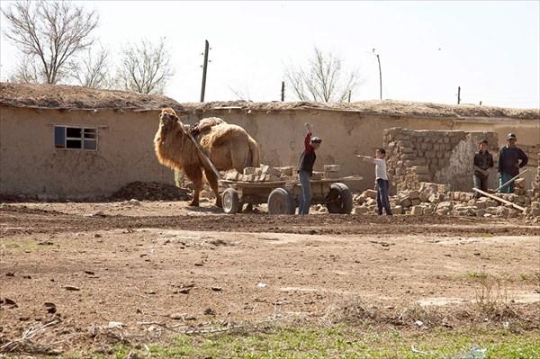 Казахстан. Сельский быт