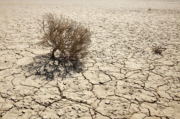 Почти пустыня