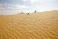 Пески.