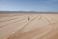 Загадочные следы в пустыне