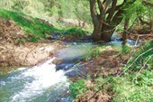 15 `водопад`