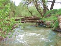 19 остатки моста