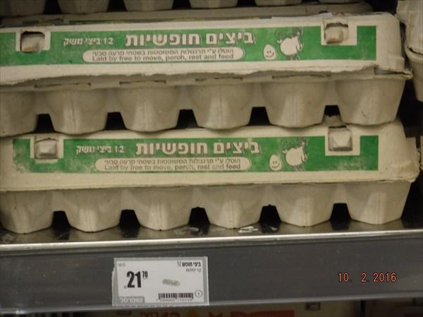 377-Тель-Авив