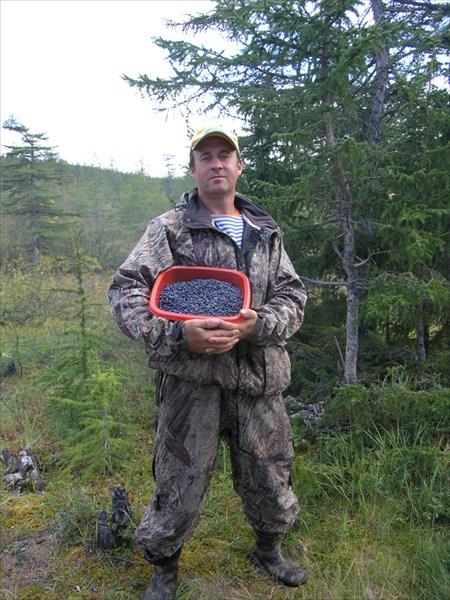 Голубика в руках Дегтярёва Олега