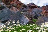 Elbrus_01
