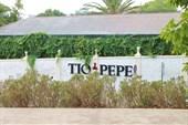 Винодельня Тио Пепе