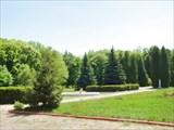Парк в бывшей усадьбе Потоцких