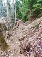 Характер тропы вдоль реки. Местами круче.
