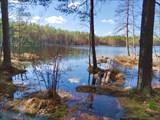 Место для отдыха у озера Лебяжье
