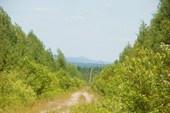 Дорога к Вильве