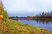 Река Бахта