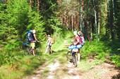 Стоянка в лесу