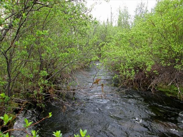 221_Протока из озера в Сергевань