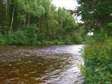 Река Ауспия