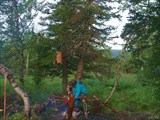 Ночёвка в лесу у ручья