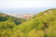 вид с горы на цитадель Нарын-калу