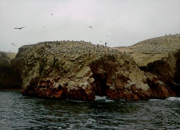 Национальный парк Паракас
