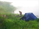 63 Ежик в тумане