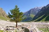 долина Адыр-Су выше альплагеря