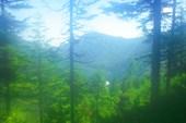 Вид с полочки при подъеме на Осиновский голец