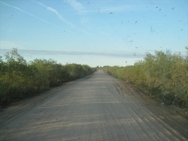 дорога из Котласа в Сыктывкар - неплохая грунтовка