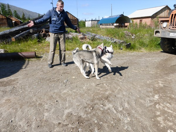Наш Павел рад и собакам