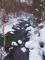 Обмелела река, обнажила свои подводные камни