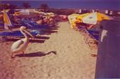 На пляже в Айя-Напе