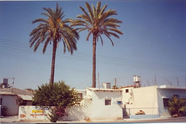 Кипрская деревня