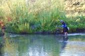 Фото 3. ВелоТитаник на Шумихе