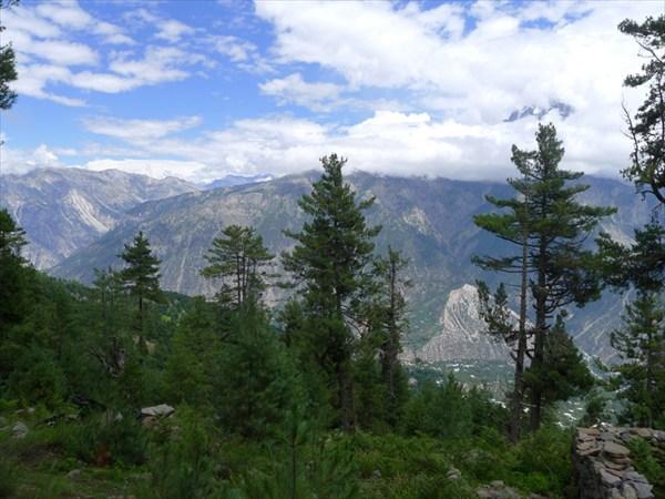Над долиной. Лес и гора Киннаурский Кайлас в тумане