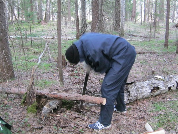 Дрова для костра и печки