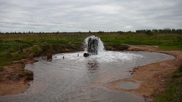 Царицынский источник и начало ручья