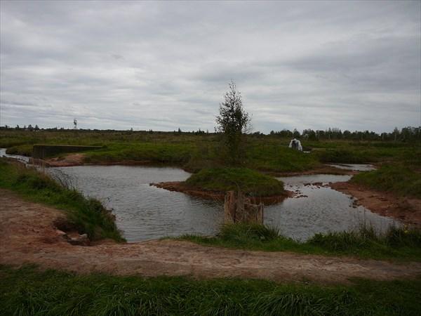 Общий вид на оба источника и ручей с плотиной