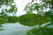 Пруд `Водопад`.