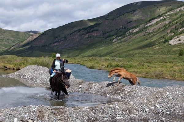 Тывинец без коня, как водник без весла