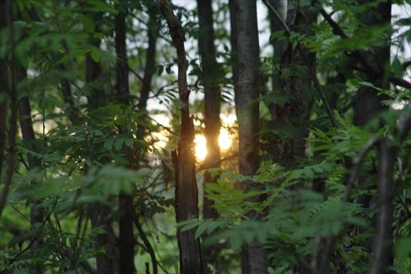 Солнце садится...