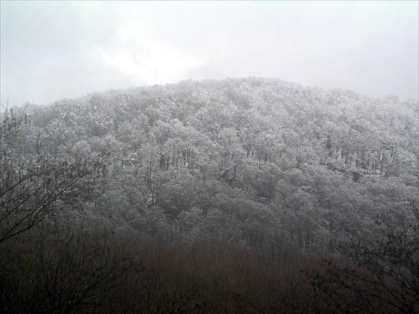 ЗимнийПейзаж2