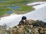 На подъёме в перевал