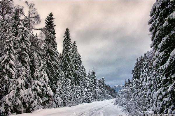 на фото: 2012-01-15-17