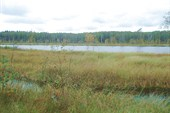 Озеро Чаек