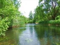 40 камни в реке