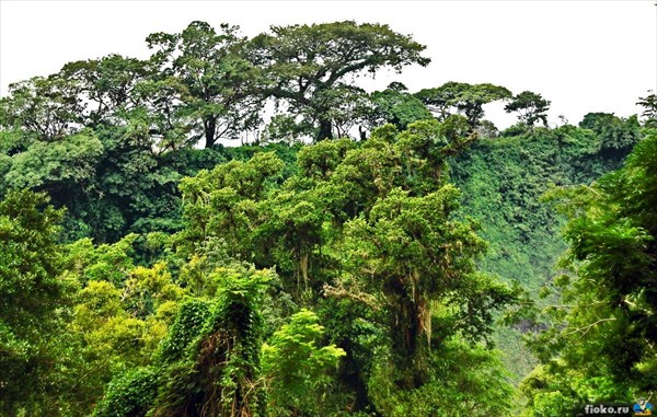 Водопад Salto de Eyipantla, Катемако