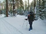 Турист-лыжник