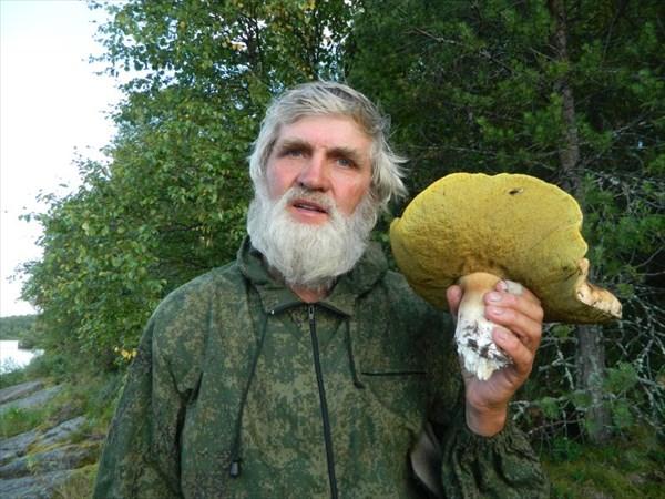 Вот это гриб!