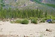 Фото 45. Большой и высокий песчано-галечный остров